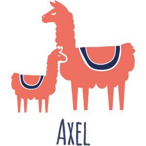 motif image produit lamas duo